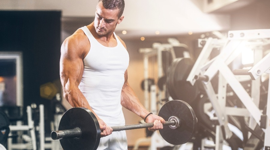What Is The L Glutamine Amino Acid And Is It Vegan