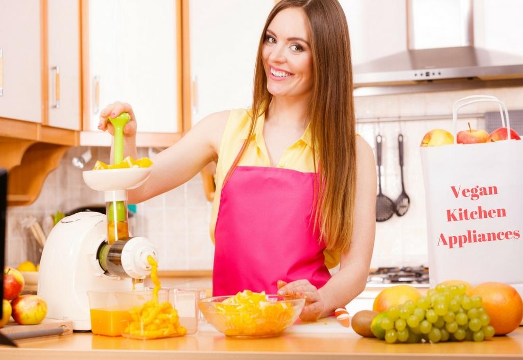 Vegan Kitchen Appliances Photo