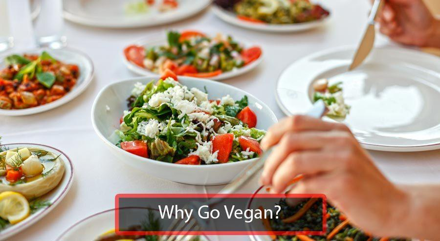 Why Go Vegan Image