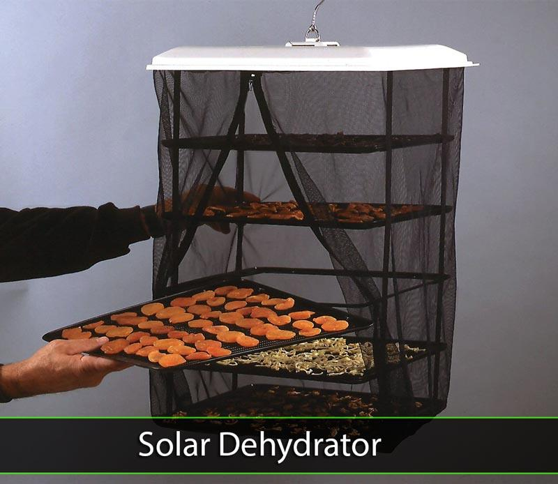 Do you want a solar or electric dehydrator