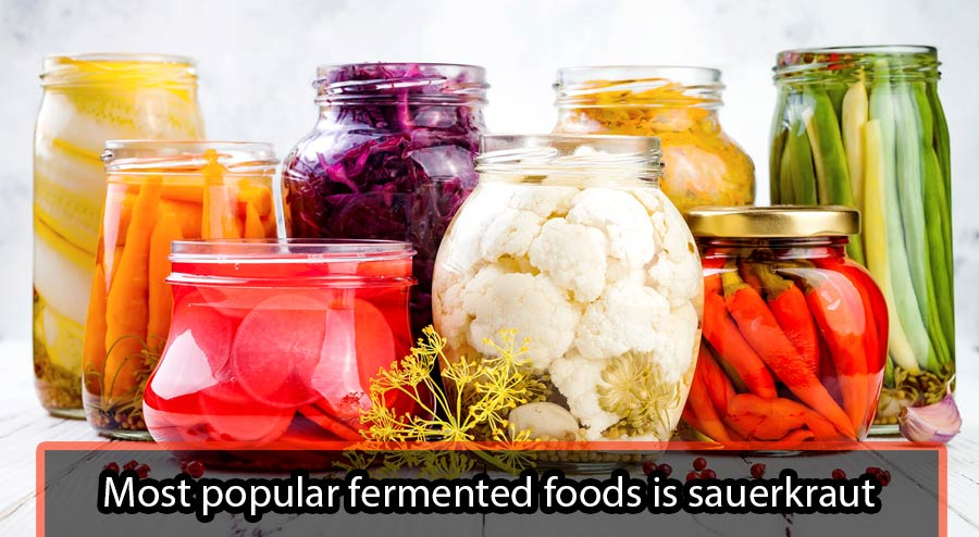 Most popular fermented foods is sauerkraut